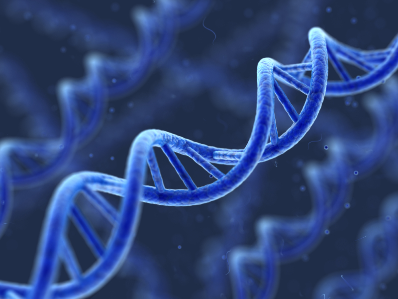 India expands the horizons of DNA Technology usage in