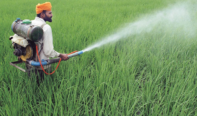 Young Scientist S Technology For Efficient Pesticide Use Awarded Biovoicenews
